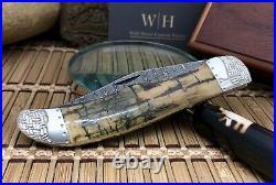 Case XX Wild Horse Custom Exotic FOSSIL Ladder DAMASCUS Folding Hunter Knife #01