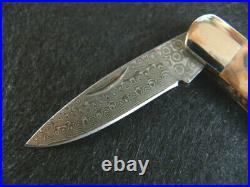 Santa Fe Stoneworks-mammoth Mocha Tusk-both Sides-damascus-folding Locking Knife